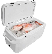 Igloo 250-Quart Great White Cooler